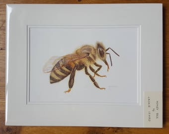 Honey Bee original watercolour painting