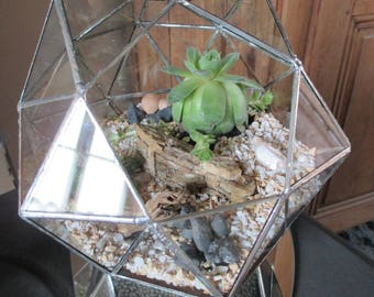 Pentakidodecaedre / terrarium / garden fairies and contemplation
