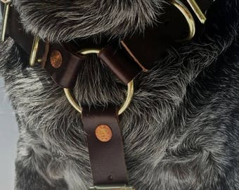 Independence Day Sale The Leather Dog Harness