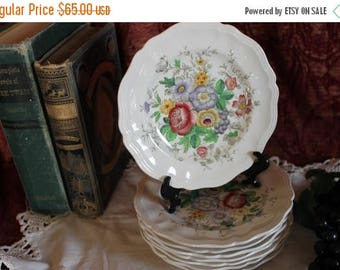 Summer Sun Sale Set of 8 Royal Doulton Bread or Dessert Plates - Malvern Pattern, D 6197, Floral, English