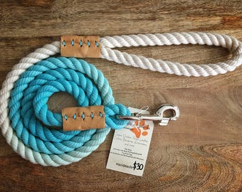 5 Foot Turquoise Ombré  Large Dog Rope Leash