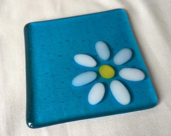 Coaster white daisy on a turquoise background