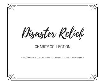 Disaster Relief: Charity Collection