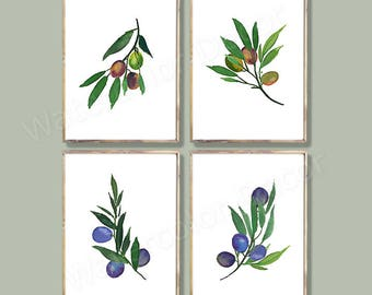 Olive Leaves Watercolor Art Prints - Set of 4 Olives Leaf Art -Botanical Wall Decor