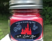 Happily Ever after~Firework show inspired