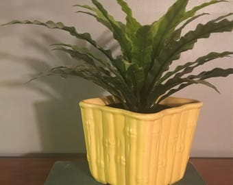 Square Yellow Bamboo Planter