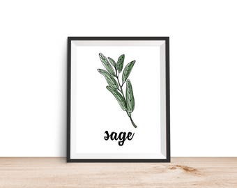 Sage Print - 8x10 Printable, Kitchen Wall Art, Kitchen Print, Kitchen Decor, Food Print, 8x10 Print, Culinary Print, Herb Print