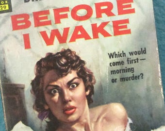 Vintage Pulp Fiction Novel, Before I Wake by Brett Halliday, 1949 Book, Dell Publishing Co. First Printing