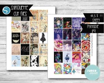 COD80-50% OFF SALE  Alice in Wonderland Planner,Alice in wonderland stickers,disney planner,full boxes,eclp disney,Alice in wonderland quote