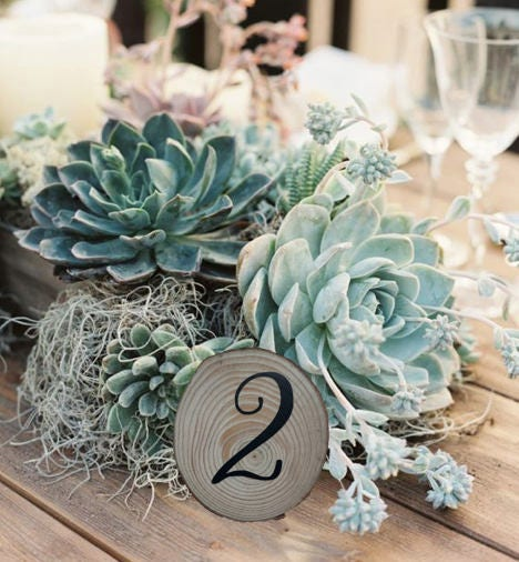 Wooden Slice Table Numbers, Wooden Table Numbers, Table Numbers ...