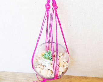 Pink Macrame Hanger with Glass Sphere and Succulent, DIY Terrarium Kit, Succulent Terrarium, Hanging Plant, Green Thumb Gift, glass bowl.