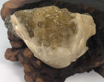 Fossilized Clam With Golden Honey Calcite Specimen - Natural Gemstone - #C11