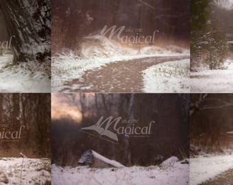 6  winter creamy digital backdrops, digital background, dreamy background, christmas backdrop, snow backdrop, snow background, snow path