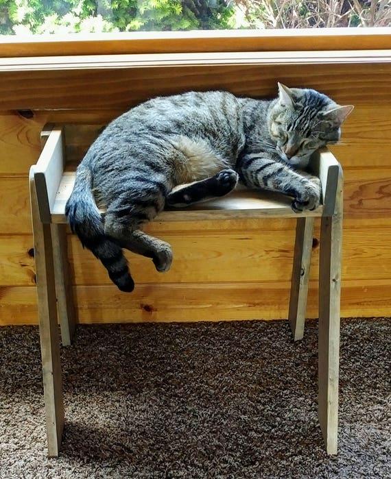 cat window seat ladder shelf plant stand cat perch cat. Black Bedroom Furniture Sets. Home Design Ideas