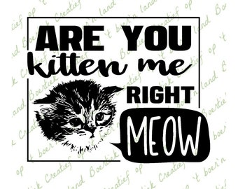 Are you kitten me right meow, cutting file, svg/studio/eps/jpg/png