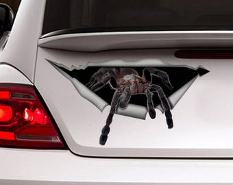 Spider  car decal,  funny car decal, spider sticker , car decoration, 3D decal