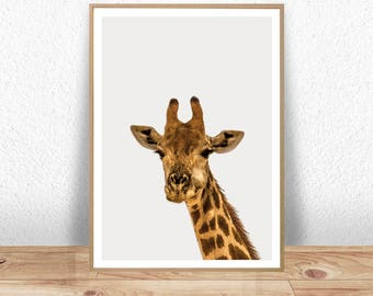 Giraffe Print, Giraffe Poster, Baby Animal Prints, Woodland Nursery Decor, Giraffe Wall Art Print, Kids Wall Art, Nursery Giraffe, Wall Art
