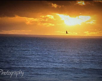 Sunset on the California Coast Color Photography