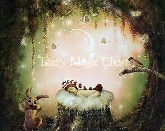 Fantasy Digital Background , enchanted forest, digital backdrop ideal for newborn, childrens /prop for composite photo. Instant download.