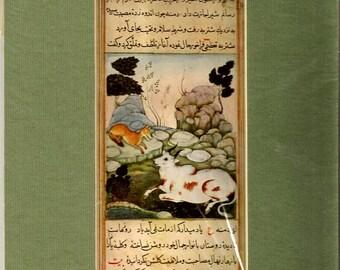 "Manuscript of Mughal Art- ""Dimnah and the Ox"""
