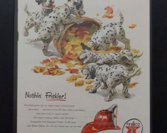 Texaco Fire Chief Gasoline, Dalmation Puppies, Vintage Ad, 1951, Illustration, Garage Decor