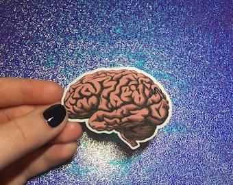 Anatomical Brain Sticker