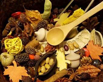 Fall Sensory Basket, Reggio Emelia, Montessori, Loose Parts w/ Schleich Squirrel, Preschool Learning, Provocation, Autumn Nature Table