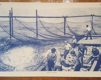 Vintage Mid-century Salmon Fishing School Chart Print No.87