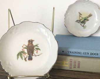 Pair of Vintage Decorative Bird Plates -Wall Hangings -Art