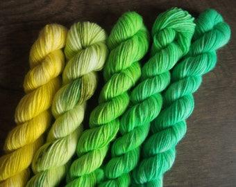 Citrus Fruit Merino 19 Kvintet - hand dyed yarn