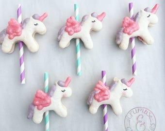 12 Flying Unicorn Ponies Macaron