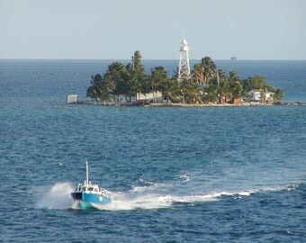 Tropical Pilot Boat