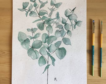 Eucalyptus - watercolor illustration - hand made