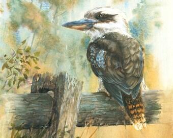 Original watercolour painting of Kookaburra on Fence, kookaburra painting, australian bird art, wildlife painting
