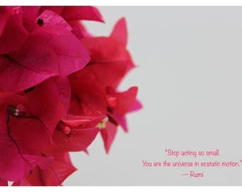 Rumi Quote Photography
