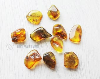 Wholesale Baltic amber stones. Jewelry making beads. 10 pieces of amber. Polished amber stones. SM35
