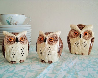 Vintage Enesco Owl Salt and Pepper Shakers and Napkin Holder