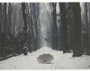 Umbrella in the Snow Photography Print