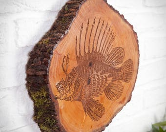 Slice of trunk with lionfish engraving