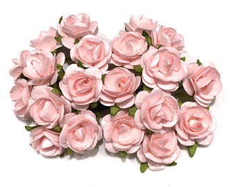 Pale Pink Open Roses Or044