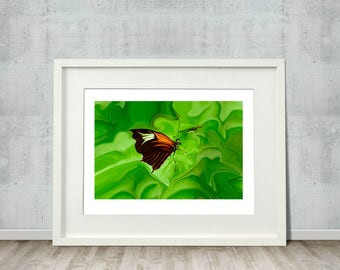 Butterfly Seeking Fine Art Abstract Print, gardens, green, summer, botanical, wall art, home decor, office decor, plants, insects, colorful