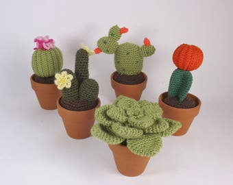 Cactus and succulent crochet-teacher gift (sold separately)