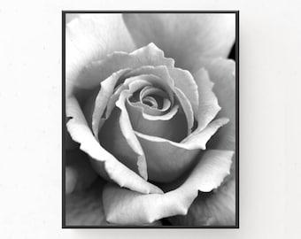 Black and White Rose Photograph, Digital Download, Rose Print, Rose Poster, Black and White Print, Modern Decor, Printable Wall Art