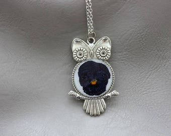 Necklace + pendant OWL resin and dried flower Pansy Bleue/Violette