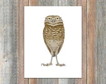 Burrowing Owl Bird Print