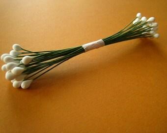 50 white pistils medium green stem