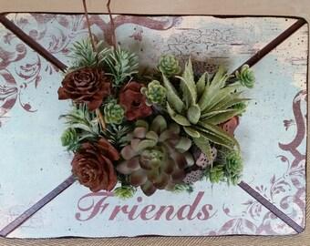 "Succulent ""Friends"" Frame"