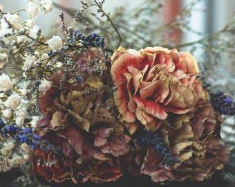 Floral photography, fine art flower print, fall photo print,macro photography, macro photo print flowers, wall art, flower wall art