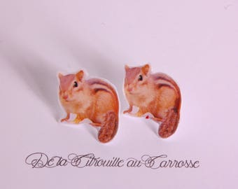 Striped Brown Chipmunk ear studs