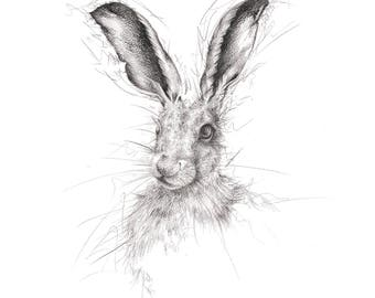 """Limited Edition Giclee Hare Art Print """"Twitch"""""""